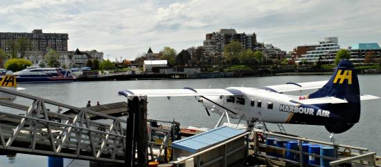 Harbour Air Seaplane Downtown Victoria BC